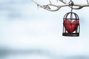 heart in bird cage